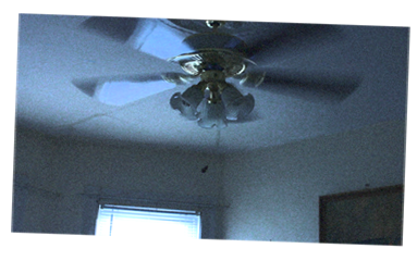 ceiling fan apocalypse now